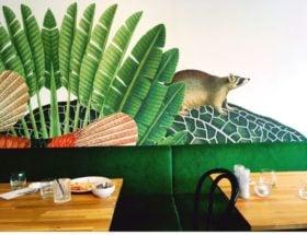 Wandeling door Haagse binnenstad vol hotspots, cultuur, winkeltjes en leuke koffietentjes en restaurants