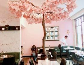 3 nieuwe hotspots in het Hofkwartier van Den Haag Confetti Cafe de Florez Lot Sixty One Coffee