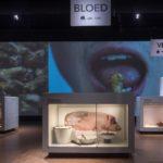 Gruwelijk Lekker in het Nederlands Openluchtmuseum