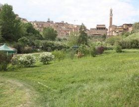 2 onbekende plekken in Siena