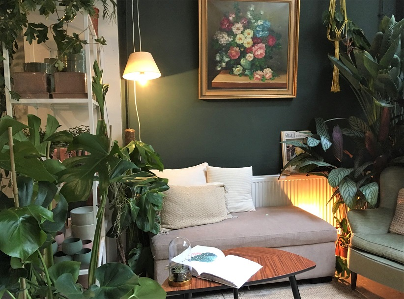 groene_en_healthy_hotspots_in_Den_Haag_filya_indoor_garden