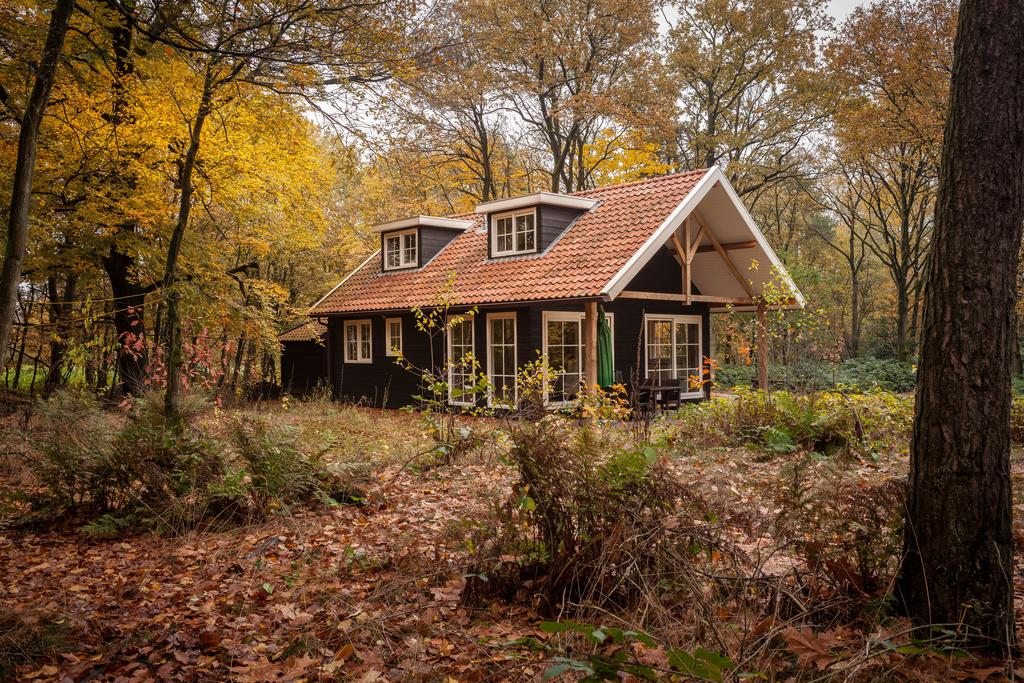 huisjes in het bos: Bos en Heide en Hezingen