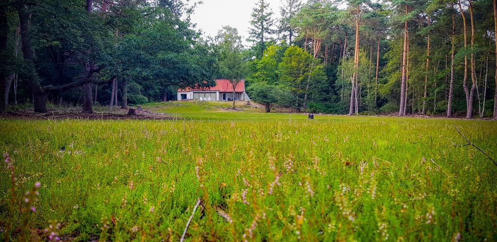 huisjes in het bos: de weeser enk in Epe