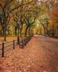 central park in october