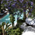 Zwemmen in Marrakech- Jardins de la Medina